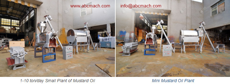 small cooking oil extraction workshop